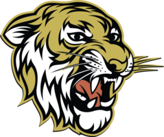 Excelsior Springs JV Boys' Basketball Tournament